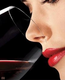 El vino y sus propiedades antiedad