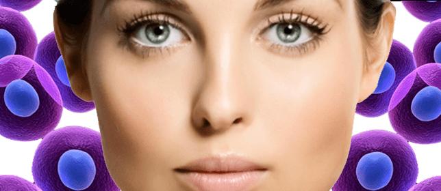 Células madre vegetales para rejuvenecer el rostro