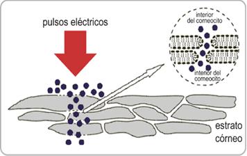Mesoterapia electro pulsos